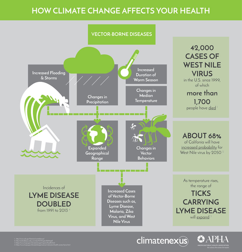 How Climate Affects Health Vector Borne Diseases